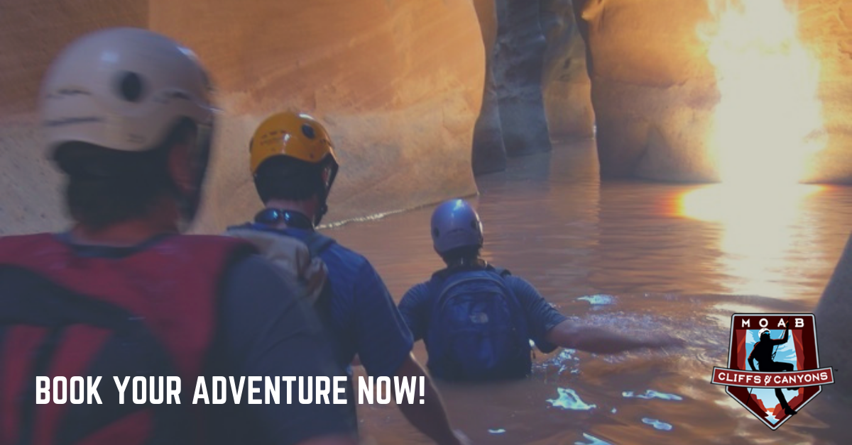 Moab Utah Adventure Tours Canyoneering Adventure Tour – Full Day Trip – Cedar Mesa Canyon